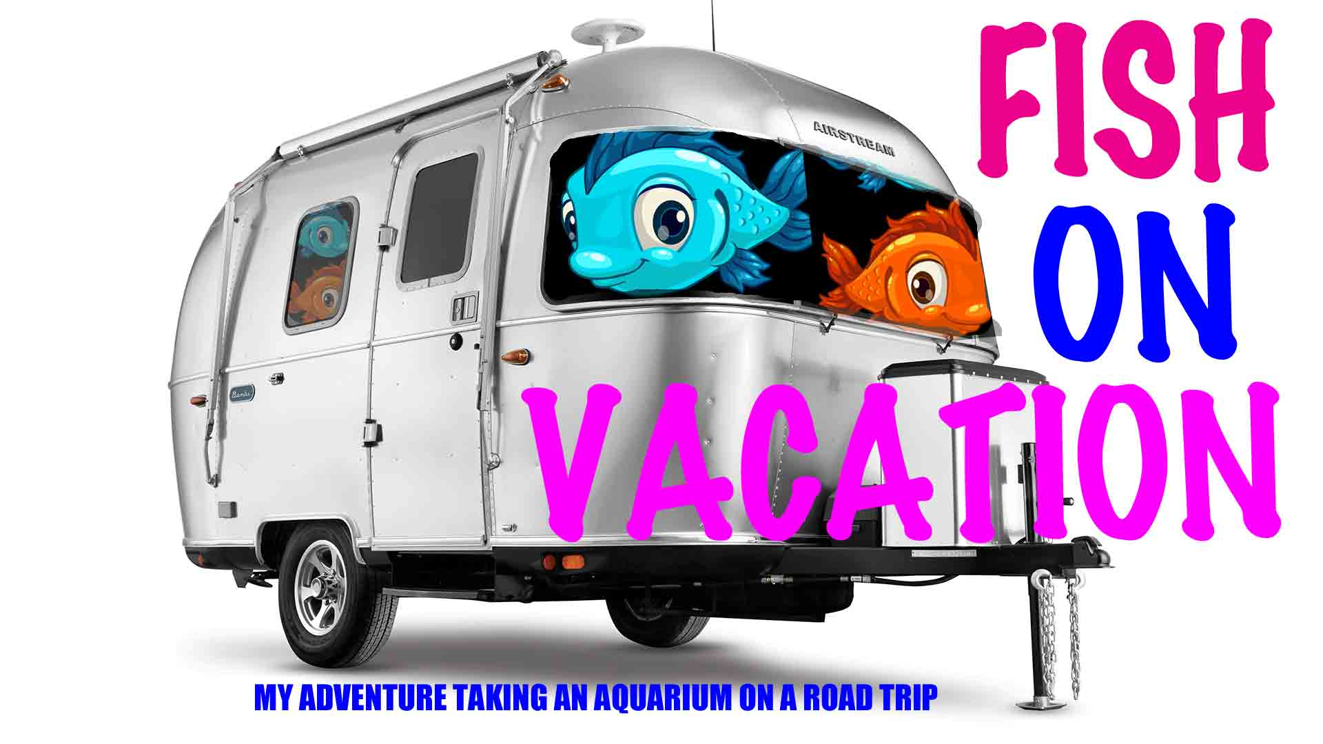 Featured image for Fish On Vacation: Travelling With My Aquarium